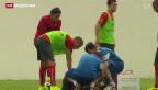 Video «Gavranovic verletzt sich am Knie» abspielen
