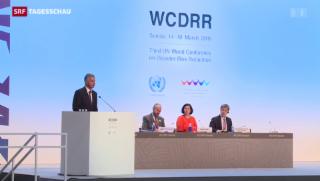 Video «UNO-Konferenz berät Katastrophenvorsorge » abspielen