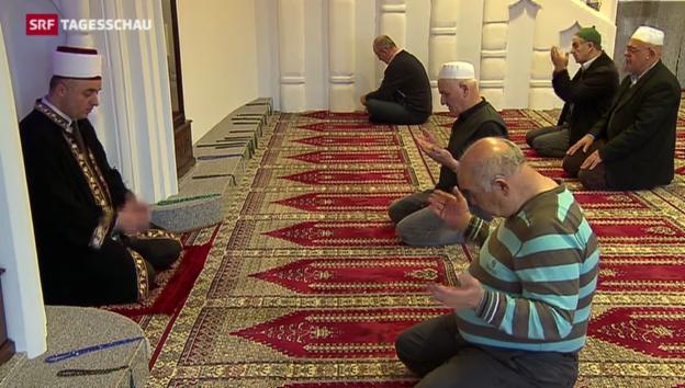 Video «Mit Imam-Ausbildung gegen Hassprediger» abspielen