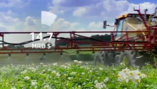 Video «Bienensterben: Studie von Syngenta mit gravierenden Mängeln» abspielen
