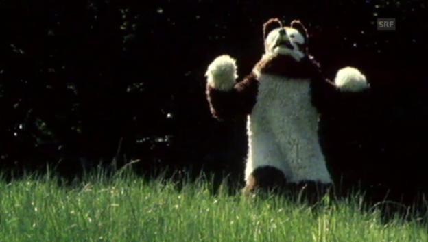 Video «Rumpelstilz - «Teddybär» (1976)» abspielen