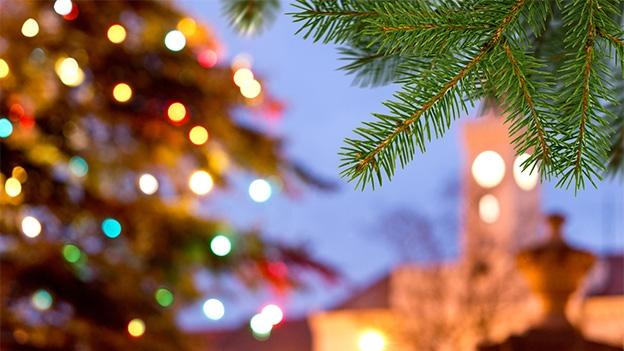 Die Geschichte zum Weihnachtslied «O Tannenbaum»