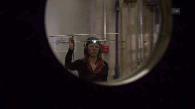 Video «Vivian Jürges: Vorbereitung auf eine Nacht in der Masoala-Halle» abspielen