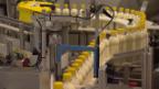 Video «Kampf um Steuerreform: Wer profitiert wirklich?» abspielen