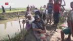 Video «Burma – Warum das Schweigen im Rohingya-Konflikt?» abspielen