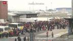 Video «Anschläge in Brüssel» abspielen