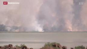 Video «Neue Gefechte in der Ukraine» abspielen