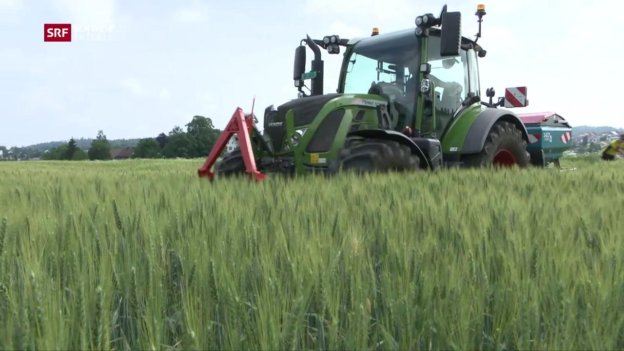 Umstrittene Agroscope-Forschung