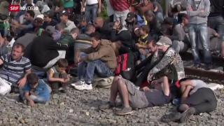 Video «FOKUS: Kroatien an der Grenze seiner Möglichkeiten» abspielen