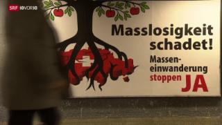 Video «Rasa-Initiative sammelt 100 000 Unterschriften» abspielen