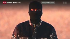 Video «Neuer Jihadi John» abspielen