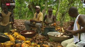 Video «Schokoladeproduzenten in der Pflicht» abspielen