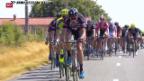 Video «Rad: 13. Etappe Tour de France» abspielen