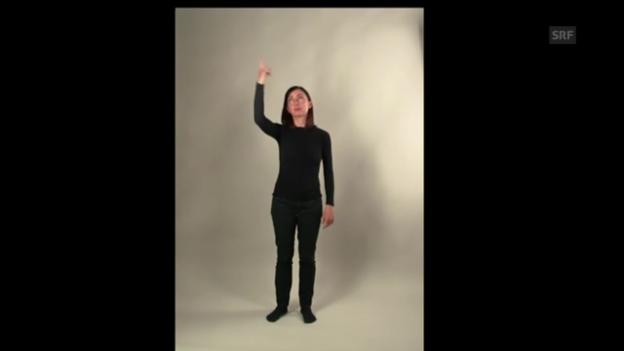 Video «Lerngeste: Gedanke» abspielen