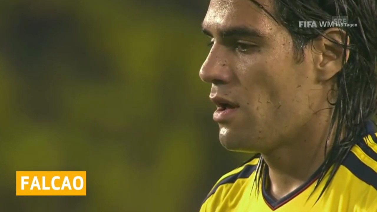 Fussball: WM 2014, Falcao fällt aus