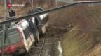 Video «Zug im Kanton Solothurn entgleist» abspielen