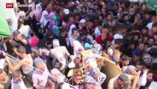 Video «Ferieninsel Kos überfordert mit Flüchtlingsansturm» abspielen