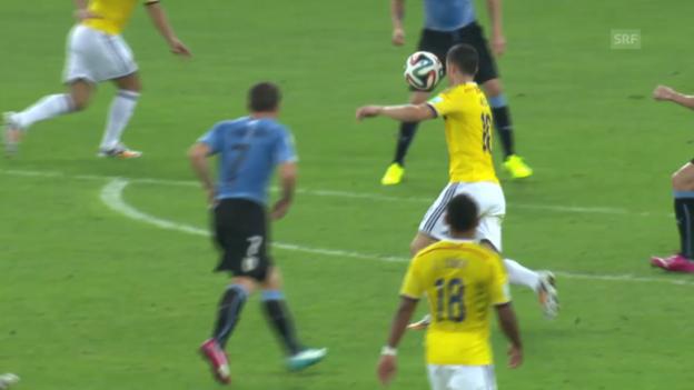 Video «FIFA WM 2014: Kolumbien - Rodriguez: Das Traumtor von James Rodriguez» abspielen
