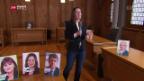 Video «Berner Bevölkerung wählt im März neue Regierung» abspielen