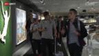 Video «Belgiens goldene Generation vor dem WM-Start gegen Algerien» abspielen