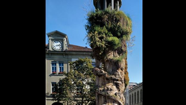 Peter Brandenberger zum Brunnen von Meret Oppenheim in Bern.