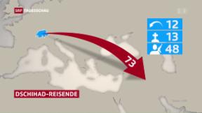 Video «Bundesrat verschärft Kampf gegen Dschihad-Reisende» abspielen