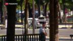 Video «Auto fährt auf Champs-Elysées in Polizeiwagen» abspielen