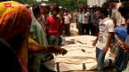 Video «Überlebende nach Fabrikeinsturz in Bangladesch geortet» abspielen
