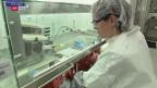 Video «Novartis baut ab und stockt auf» abspielen