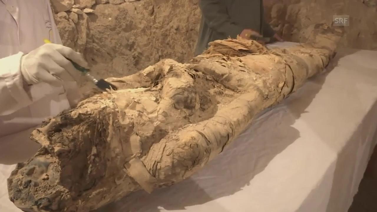 Zwei Grabkammern in Luxor geöffnet