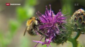 Video «Mehr tun für Tiere und Pflanzen» abspielen