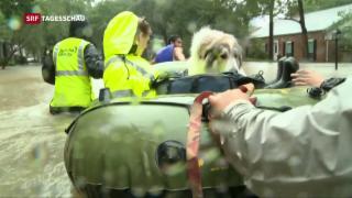 Video «Der Regen in Houston klingt ab» abspielen
