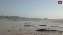 Link öffnet eine Lightbox. Video Dutzende Krokodile sonnen am Flussufer abspielen