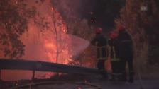 Link öffnet eine Lightbox. Video Waldbrände in Südfrankreich abspielen