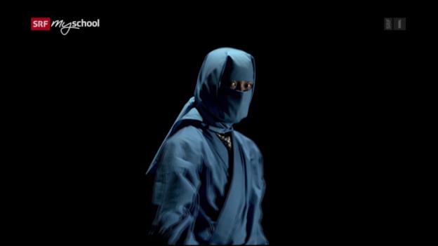 Video «Achtung! Experiment: Der magnetische Ninja (21/52)» abspielen