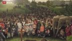 Video «Spendenrekord dank Erbschaften» abspielen