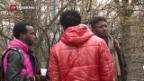 Video «Schnellere Asylverfahren in Deutschland» abspielen