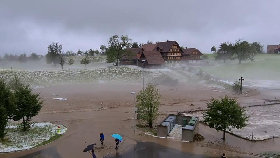25. Juni: Nach dem Hagelunwetter in Meierskappel/LU, Beatrice Nyffenegger