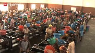 Video «Die unbarmherzigen Samariter (3/5)» abspielen