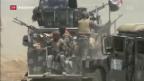 Video «Irakische Armee startet Sturm auf Falludscha» abspielen