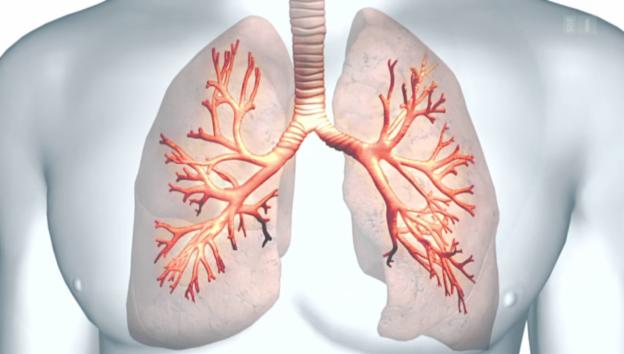 Video «Asthma, Medikamentenfehler im Spital, Leben mit Parkinson» abspielen