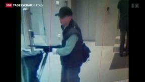Video «Amokschütze von Paris verhaftet» abspielen