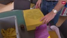 Link öffnet eine Lightbox. Video Schweizer Erfindung im Kampf gegen die Varroamilbe abspielen