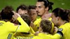Video «Schweden blickt in Richtung EURO» abspielen
