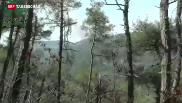 Video «Amateuraufnahmen zeigen Absturzort des Flugzeuges» abspielen