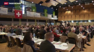 Video «Taktieren um FDP-Präsidium» abspielen