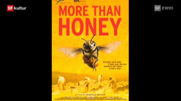 Video «More Than Honey (CH/D/A 2012)» abspielen