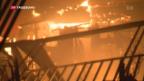 Video «Brände in Kalifornien» abspielen