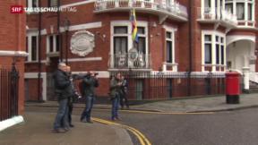 Video «UNO-Gutachten stützt Assange » abspielen