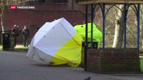 Video «Rätselhafter Vergiftungs-Fall in Amesbury» abspielen
